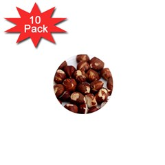 Hazelnuts 1  Mini Button Magnet (10 pack)