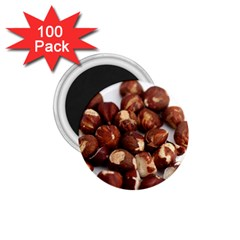 Hazelnuts 1 75  Button Magnet (100 Pack)