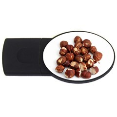 Hazelnuts 1GB USB Flash Drive (Oval)