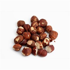 Hazelnuts Canvas 12  X 18  (unframed)