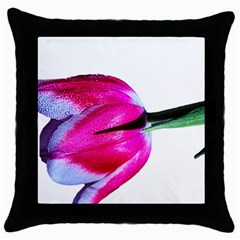 Pink And White Tulip Black Throw Pillow Case