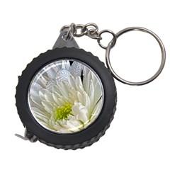 Un Named White Flower Measuring Tape