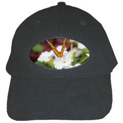 Butterfly 159 Black Baseball Cap