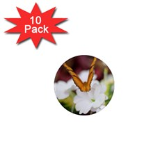 Butterfly 159 1  Mini Button Magnet (10 Pack)