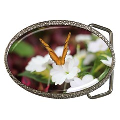 Butterfly 159 Belt Buckle (Oval)