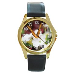 Butterfly 159 Round Metal Watch (gold Rim)