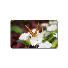 Butterfly 159 Magnet (name Card)
