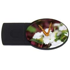 Butterfly 159 1GB USB Flash Drive (Oval)