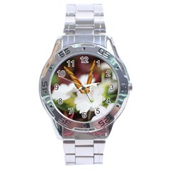 Butterfly 159 Stainless Steel Watch (men s)