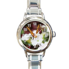 Butterfly 159 Round Italian Charm Watch