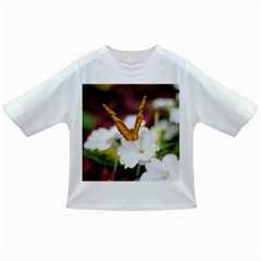 Butterfly 159 Baby T-shirt