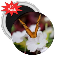 Butterfly 159 3  Button Magnet (10 pack)