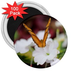 Butterfly 159 3  Button Magnet (100 Pack)