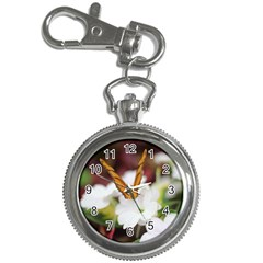 Butterfly 159 Key Chain & Watch