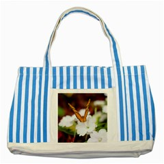 Butterfly 159 Blue Striped Tote Bag