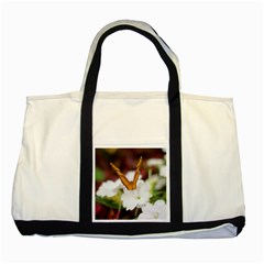 Butterfly 159 Two Toned Tote Bag