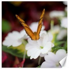 Butterfly 159 Canvas 20  X 20  (unframed)