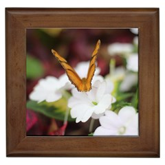 Butterfly 159 Framed Ceramic Tile