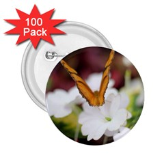 Butterfly 159 2 25  Button (100 Pack)