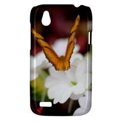 Butterfly 159 HTC T328W (Desire V) Case