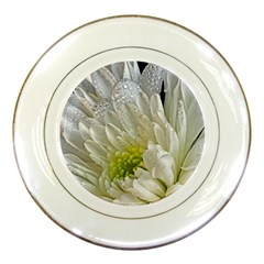 Un Named White Flower Porcelain Display Plate