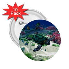 Sea Turtle 2 25  Button (10 Pack)