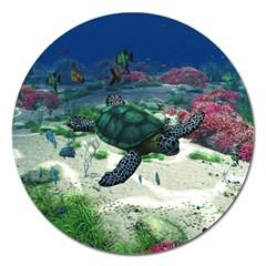 Sea Turtle Magnet 5  (round)
