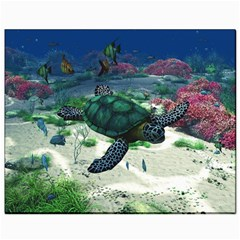 Sea Turtle Canvas 8  x 10