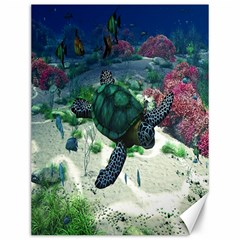 Sea Turtle Canvas 12  x 16