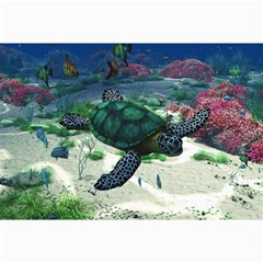 Sea Turtle Canvas 12  x 18