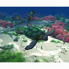 Sea Turtle Canvas 16  X 20