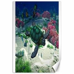 Sea Turtle Canvas 20  x 30