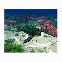 Sea Turtle Glasses Cloth (small, Two Sides)
