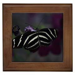 Butterfly 059 001 Framed Ceramic Tile