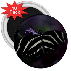 Butterfly 059 001 3  Button Magnet (10 pack)