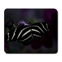Butterfly 059 001 Large Mouse Pad (Rectangle)