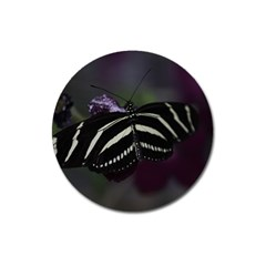 Butterfly 059 001 Magnet 3  (round)