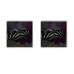 Butterfly 059 001 Cufflinks (Square)
