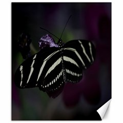 Butterfly 059 001 Canvas 20  x 24  (Unframed)