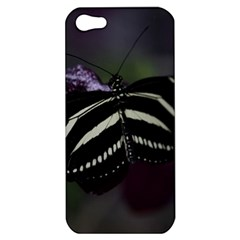 Butterfly 059 001 Apple iPhone 5 Hardshell Case