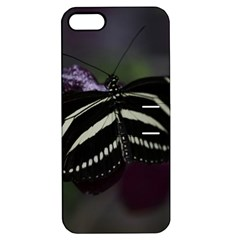 Butterfly 059 001 Apple iPhone 5 Hardshell Case with Stand
