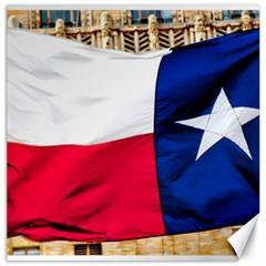 Texas Canvas 20  X 20  (unframed)