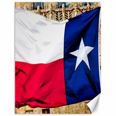 TEXAS Canvas 18  x 24  (Unframed)
