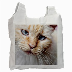 BLUE EYES Recycle Bag (Two Sides)