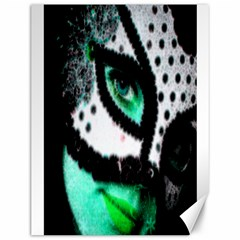 MASKED Canvas 12  x 16  (Unframed)