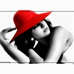 RED HAT Canvas 20  x 24  (Unframed)