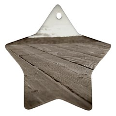 Laguna Beach Walk Star Ornament