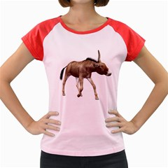 Donkey 3 Women s Cap Sleeve T-Shirt (Colored)