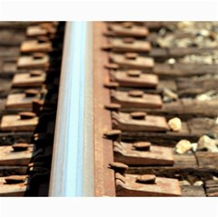 Train Track Canvas 16  x 20  (Unframed)