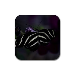 Butterfly 059 001 Drink Coaster (Square)